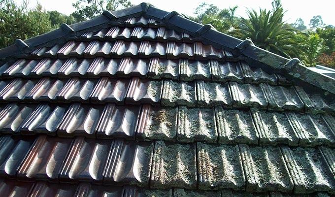 Avant et après: démoussage d'une toiture